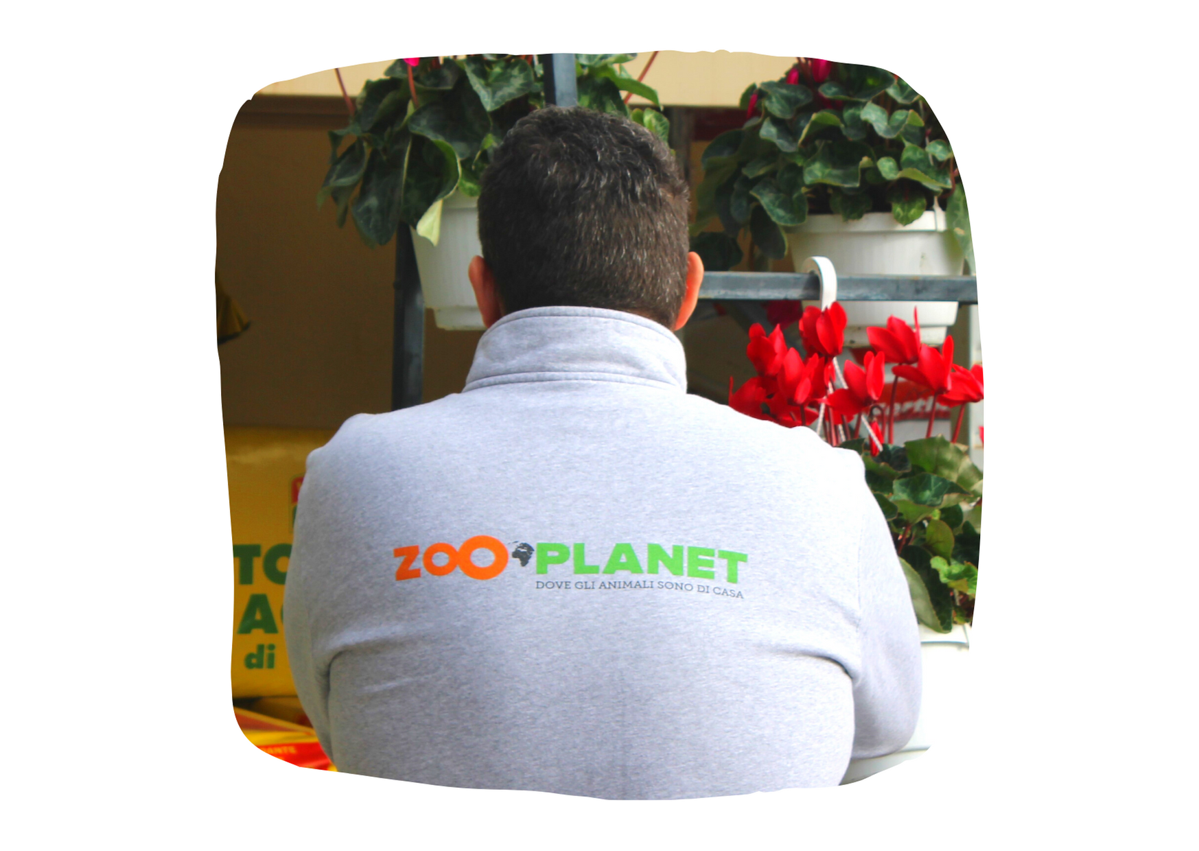 Zooplanet Franchising