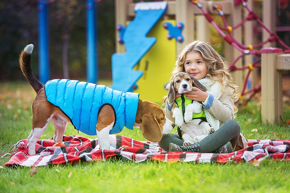 Cappottini per cani & co: proteggi Fido dal freddo invernale